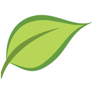 New Leaf Recovery Favicon 512x512